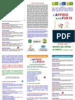 Affido Si Fa Forte 20 Novembre 2015 Brochure
