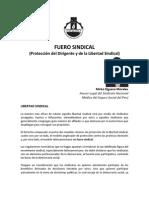 libertad_sindical.pdf