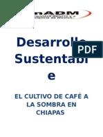 Café a La Sombra