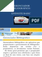 Minicurso Endnote