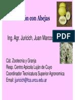 Apicultura 2 - Polinizacion 2014