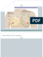 Patologia de Las Mamas