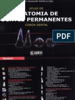 Anatomia Dentes Permanentes Glauco-fioranelli