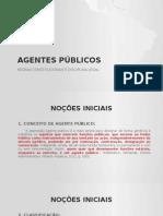 AGENTES PÚBLICOS 2015