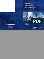 Libro Estudio de Multas Sector Energia Vol1
