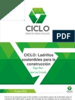 Presentación Proyecto Ciclo - Cintecin Final