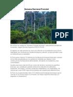Semana Naciosemana de la educacion forestal