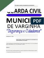 Dispõe Sobre a Criação e Organização de Grupamentos Da Guarda Municipal de Varginha Ronda Bike e Afins.