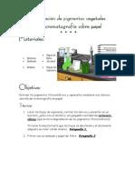 cromatografía de papel,espinacas.doc