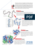 ¿qué es una proteina?