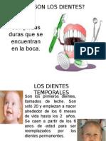 diapositiva de los dientes
