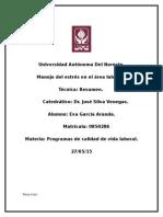 Resumen Manejo Del Estres