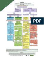 Fluxograma Classificacao de Risco e Manejo Clinido Do Paciente