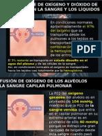 Neumologia Cap 40