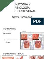 Anatomia y Fisiología Gastorintestinal Parte II