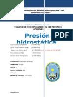 presion hidrostatica 6