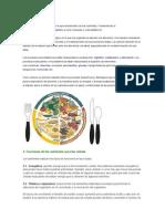 LA NUTRCION 2.docx