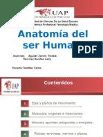 terapiamanual-expolista21-100531160537-phpapp02.pptx