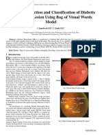 Automatic Detection and Classification of Diabetic Retinopathy Lesion Using Bag of Visual Words Model