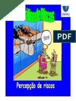 per cepção de riscos.pdf