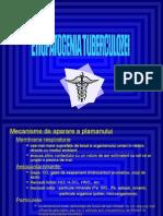 Ftiziologie UMFCV C3