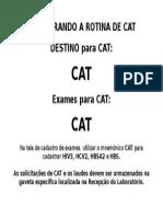 Cadastro de CAT
