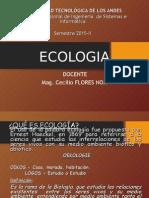 Ecología en Ing. Sistemas
