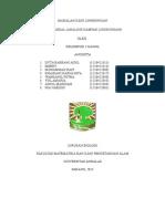 AMDAL fix.doc