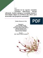 Índice de crecimiento de las especies Artemisia absinthium, Artemisia ludoviciana, Borago officinalis, Justicia spicigera, Lavandula dentata y Marrubium vulgare en el JPMAX del CIBAC para desarrollar una propuesta sustentable