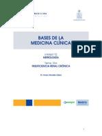 12_6_insuficiencia_cronica.pdf