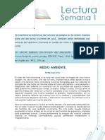 Medio Ambiente_diccionario de Desarrollo