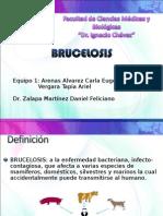 BRUCELOSIS seccion 01