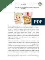 14)nfermedades de las vías urinarias de interes en Medicina interna 08-08-2014#17 Neira - #18 Orellana.docx