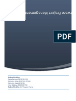 software project management project deliverable 1