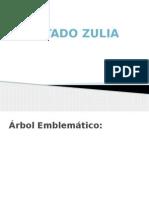 Estado Zulia PPT