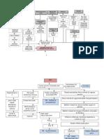 Patofisologi PROM
