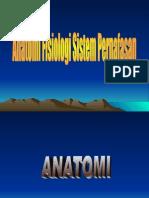 Apikes - Anatomi Otot Pernafasan