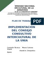 Plan_de_trabajo Consejo Consultivo Unia Okkkkk