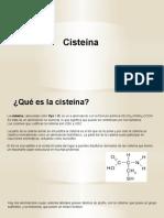 Cisteína y Serina