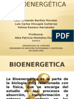 BIOENERGETICA.pptx