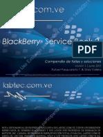 BLACKBERRY SERVICE BOOK 2.pdf