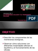 La Membrana Celular y El Transporte Celular