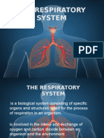 The Respiratory System.pptx