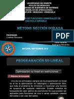 Modelos I. Seccion Dorada (1)