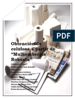 Reporte Celulosa
