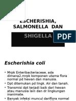 Escherishia, Salmonella Dan Shigella