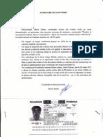 MARIN STEFAN.pdf