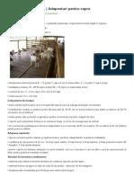 Model Ferma de Capre - Articol Agromedia