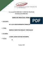 Medidas Coercitivas Reales y Personales_trabajo Terminado