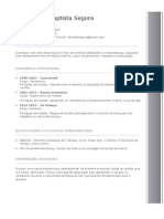 Modelo de Curriculum 1 Preenchido